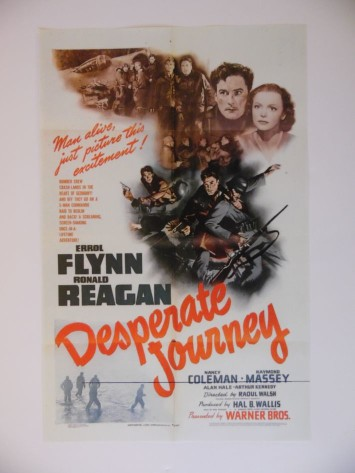 desperatejourneya